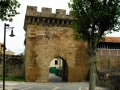 Puerta-del-Paseo-Real