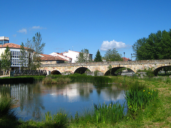 Puente-Mayor