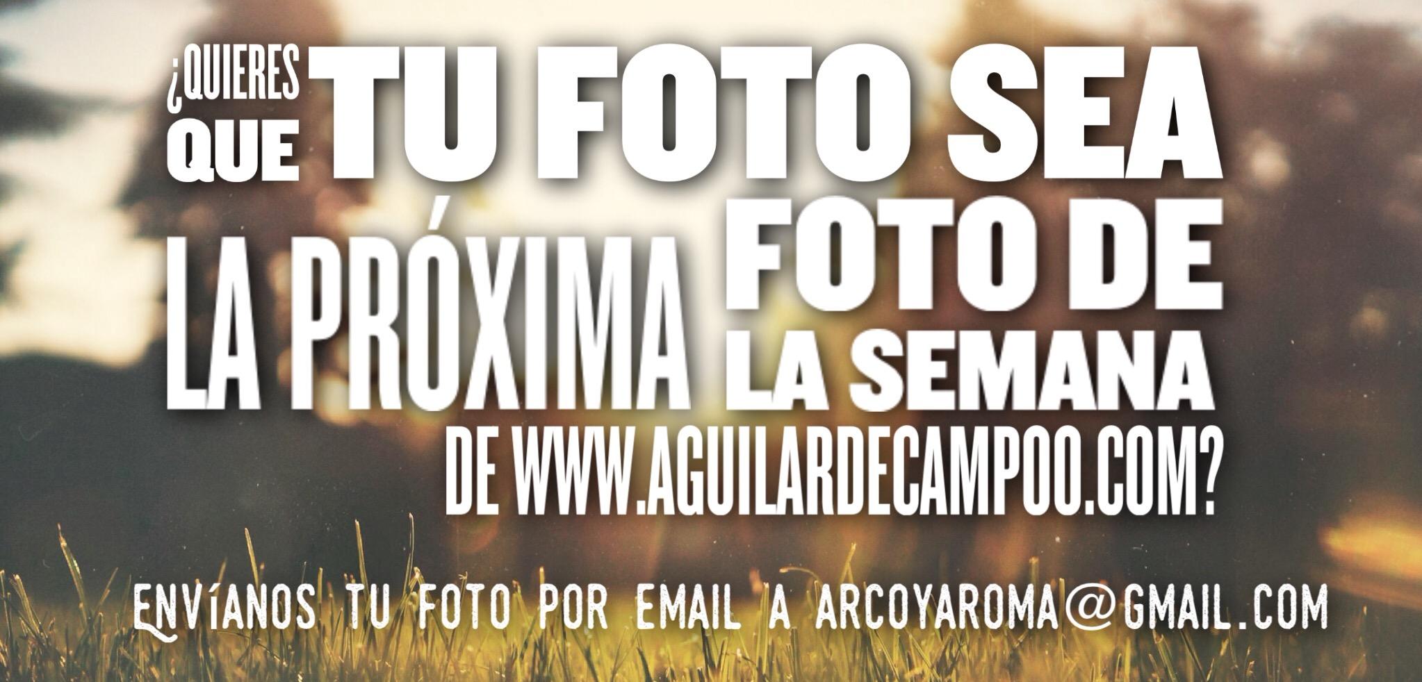 Foto 30-10-15 16 03 27