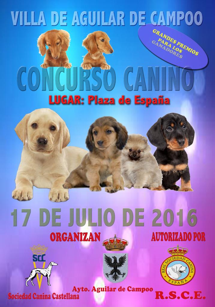 Concurso canino cartel (1)