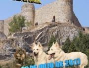 cartel_aguilar perros
