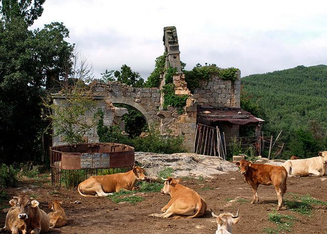 NAVAS DE SOBREMONTE